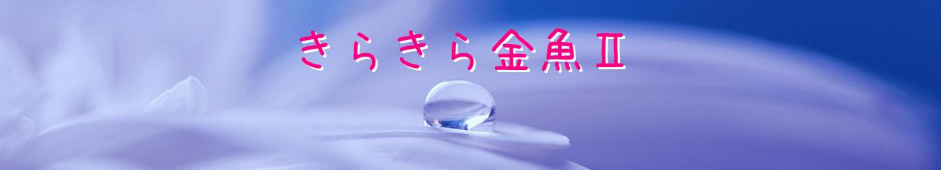 きらきら金魚Ⅱ