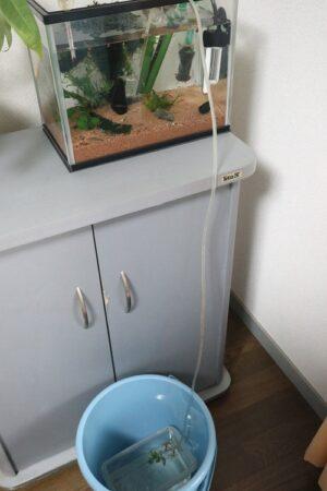 水槽の点滴