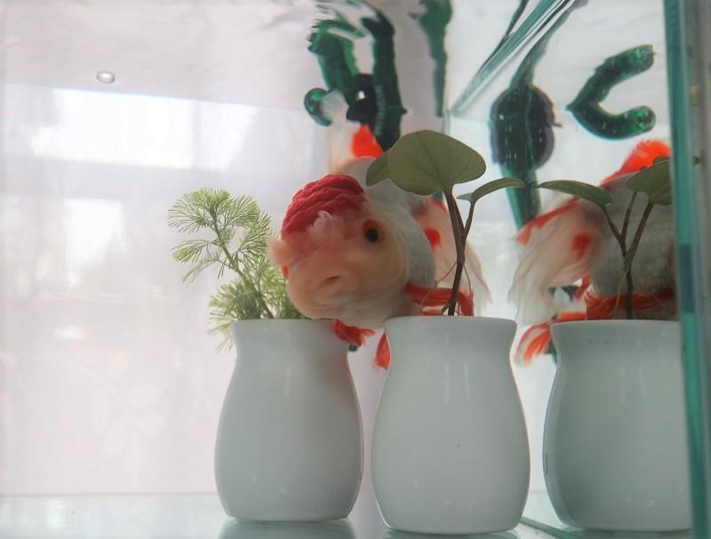 壺を超える金魚
