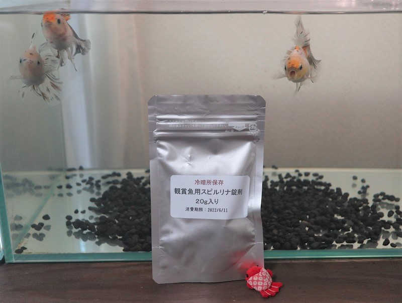 観賞魚用スピルリナ錠剤